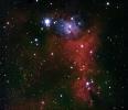 NGC 2264_1